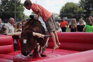Bull rentals Canton OH